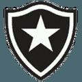 Botafogo FIFA 08
