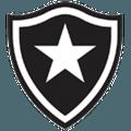 Botafogo FIFA 09