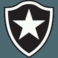 Botafogo de Futebol e Regatas FIFA 17
