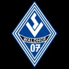 SV Waldhof Mannheim FIFA 22