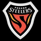 Pohang Steelers FIFA 22