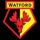 Watford FIFA 22