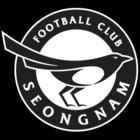 Seongnam FC FIFA 22